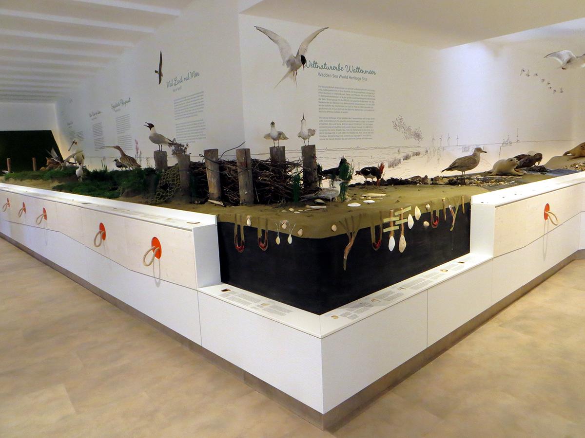 Blick in die Ausstellung des Nationalpark-Hauses Wangerland