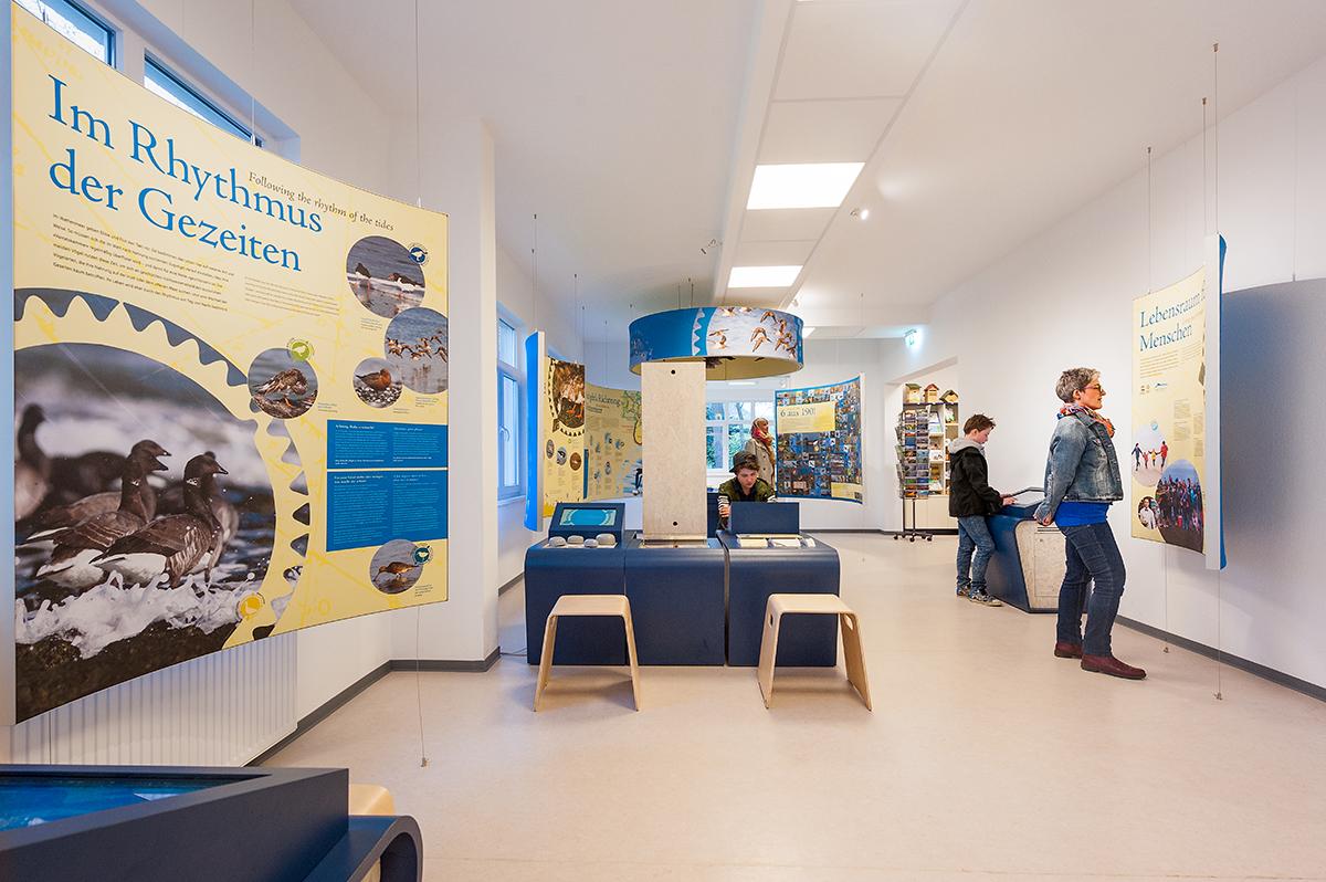 Ausstellung im Nationalpark-Haus Wangerooge
