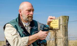 Ein Ranger markiert ein Brutgebiet im Nationalpark Wattenmeer.