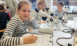 Im Labor des Multimar Wattforum können Kinder und Eltern selbst zu Forschern werden. Das Nationalpark-Zentrum bietet in den Sommerferien fünf Termine für Familien an.
