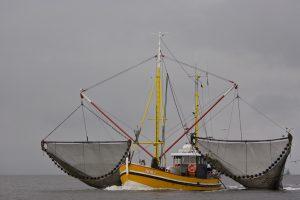 Krabbenkutter mit Netzen