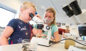 Im Labor des Multimar Wattforum können Kinder und Erwachsene zu Forschenden werden. Das Nationalpark-Zentrum bietet in den Herbstferien fünf Termine für Familien an