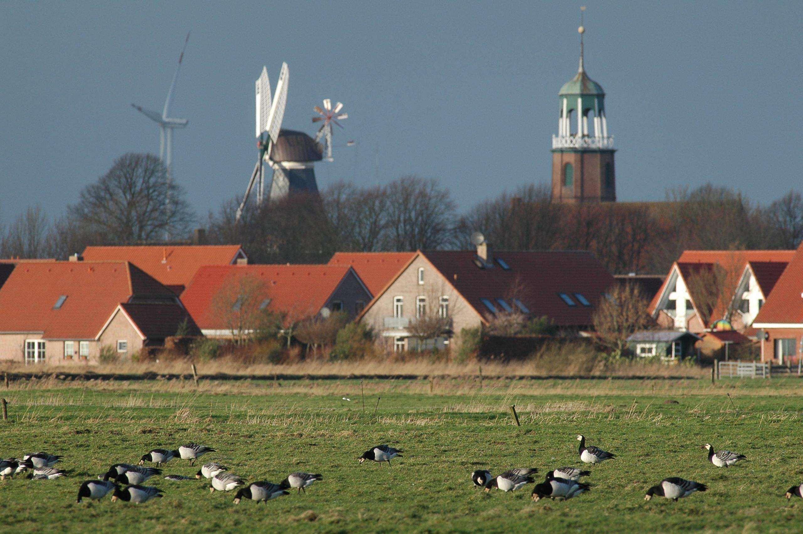 Ditzum_Rheiderland