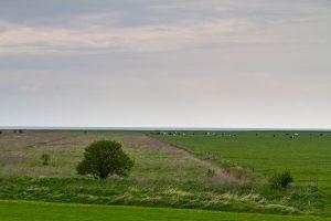 Ungenutzte und genutzte Flächen bei Berensch