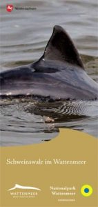 Faltblatt Schweinswale Titel