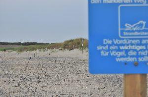 Markierter Brutplatz des Sandregenpfeifers