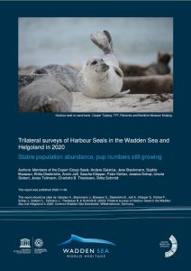 Harbour seal report 2020