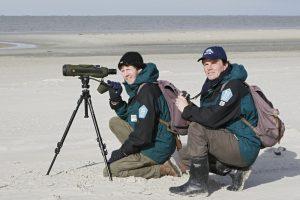 Ranger im Nationalpark Schleswig-Holsteinisches Wattenmeer