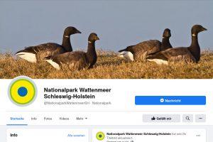 Faebook-Seite des Nationalparks Schleswig-Holsteinisches Wattenmeer