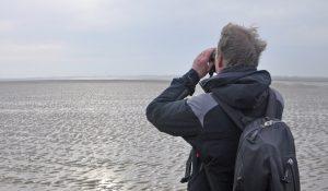 Uilke van der Meer blickt aufs Watt