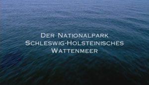 Video Nationalpark
