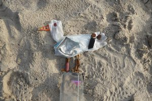 Fotochallenge Plastikaktionswoche