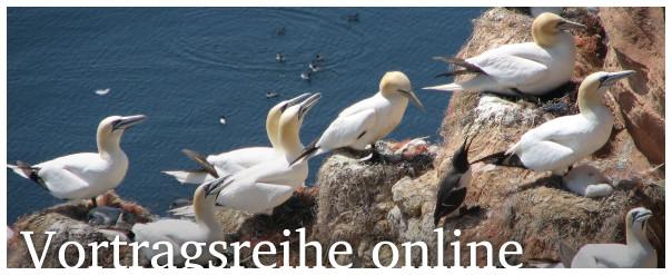 Vortragsreihe online
